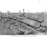 Logging train crew members standing on logs loaded onto flatbed moving cars, Coats-Fordney Lumber...