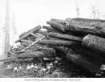 Logging crew and large cold deck, Schafer Brothers Logging Company, n.d.