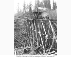 Construction crew and 80 foot trestle under construction, Schafer Brothers Logging Company, n.d.