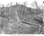 Incline railroad track with runaway train track off to one side, White Star Lumber Company, n.d.