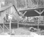 Logging and mess hall crews outside mess hall, Wynooche Timber Company, Montesano, ca. 1921
