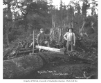 Two young loggers and a Vaughn drag saw, Wynooche Timber Company, ca. 1921
