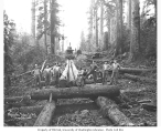 Crew with log skidway under construction and donkey engine in distance, Wynooche Timber Company,...