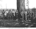 Loggers beside railroad tracks, Weyerhaeuser Timber Company, Melbourne, n.d.