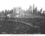 Railroad logging camp called Circle City, Weyerhaeuser Timber Company, n.d.