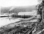 Steamship CITY OF SEATTLE docked at the Hawk Fish Co. cannery, Hawk Inlet, Alaska, 1911