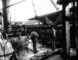 Crew of the ship GLORY OF THE SEAS with fish catch on deck, Alaska, August 19, 1911