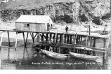 Alaska Codfish Company]s wharf, showing men flinging fish up to dock from dories, Squaw Harbor,...
