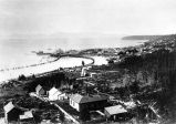 Seattle from Beacon Hill in 1881.