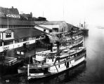 Tacoma Municipal Dock, with steamers FLYER, VASHON, and CREST.