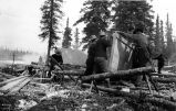 Building boats on Lake Bennett, British Columbia, 1898.