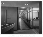 Washington State Game Department interior showing hallway, Seattle, 1948
