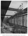 Blakeley Clinic exterior showing landscaping, Seattle, 1957