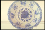 Blue/White Dish
