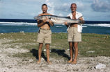 Scientists displaying fish, Rongelap Island, summer 1964