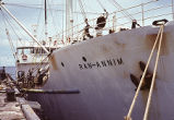 Ship RAN ANNIM that housed the research team docked at Eniwetok Island, Aug. 14, 1964