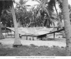 Galvanized metal drain natives used to catch fresh rain water, Rongerik Island, summer 1947