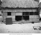 Native hut showing woman weaving inside, Rongerik Atoll, 1947