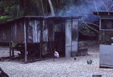 Cooking house, Rongelap Island, August 24, 1964