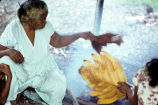 Native woman cooking breadfruit, Rongelap Island, August 24, 1964