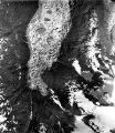 Columbia Glacier, Kadin Lake, Ice-Dammed Lake, 09/03/1977