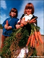 Girls with a bunch of carrots in the Komi Republic