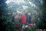 School children on a field trip to the plant conservatory in Leningrad