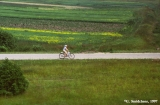 Woman bicycling through Lithuanian meadows to deliver milk.