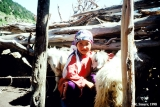 Child with goats in a shepherd's dwelling (kosh), Aksu Valley