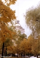 Autumn trees and the Admiralty building in Saint Petersburg