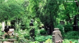Novodevichy cemetery in Moscow