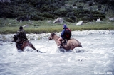 Horse crossing the upper Bayankol River