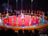 Performance in the Moscow circus