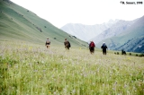 Hikers in a meadow in the Tuyuk Asha Valley