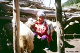 Kyrgyz girl with goats outside a shepherd's dwelling (kosh) in the Aksu Valley