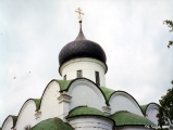 Cupolas of the Trinity Cathedral in the Assumption Monastery in Aleksandrovskaya Sloboda