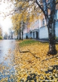 Autumn scene in the Komi Republic