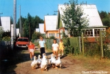 Children with geese in a village of the Komi Republic