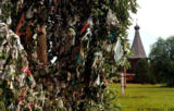 Tree decorated with ribbons, a wedding ritual, with the Church of St. George in the background, in...