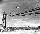 Cables and catwalk on the Tacoma Narrows Bridge during construction, January 1940
