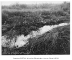 Mud hole and conduits on a farm near S.W. Barton Street and 25th Avenue S.W., Delridge...