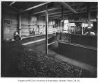 Food bank interior, probably at N.W. 73rd Street and 24th Avenue N.W., Ballard neighborhood,...