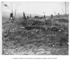Clearing a field near S.W. Barton Street and 25th Avenue S.W., Delridge neighborhood, Seattle,...