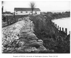 Flood prevention work near the Briscoe School on the Green River in Kent, February 11, 1935