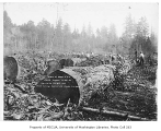Wood cutting operation east of Renton, October 2, 1934