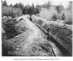 Beaver Lake Creek overflow ditch, Sammamish, December 20, 1934