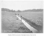 Beaver Lake Creek overflow ditch being dug at Holstein's Ranch, Sammamish, December 20, 1934