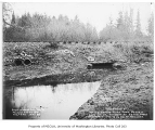 Beaver Lake Creek overflow ditch and culvert, Sammamish, December 20, 1934