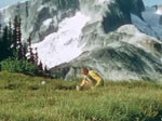 Backpack Trip at Whatcom Pass and Tapto Lakes ca. 1958