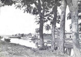Fish Boats and Homes of Fishermen at Mayaguez, Porto Rico